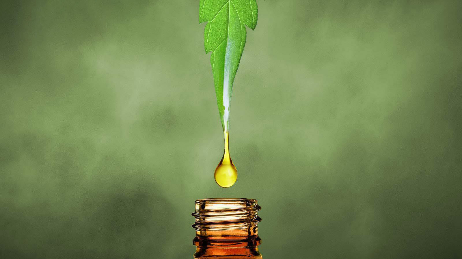 Guide To Use CBD Oil Appropriately For Safe Results